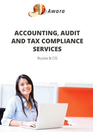 accounting-and-audit-brochure